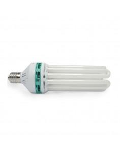 Ampoule 150w 6400k CFL - Croissance