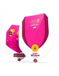 White Widow RQS