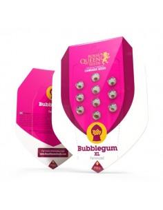 Bubble Gum XL RQS