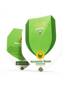 Amnesia Haze automatic RQS