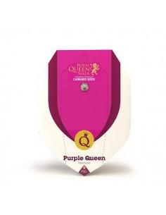 Purple Queen RQS