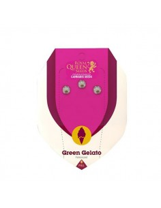Green Gelato RQS