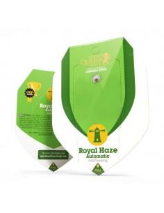 Royal Haze automatic RQS