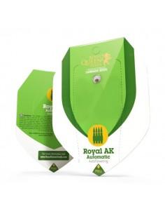 Royal AK automatic RQS