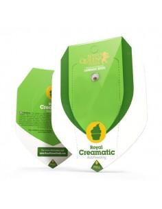 Royal Creamatic automatic RQS
