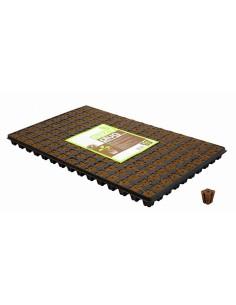 Eazy Plug, cube d'enracinement 2,2 x 2,2cm 150 pièces