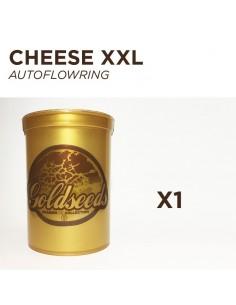 GOLDSEEDS - CHEESE XXL - Autoflowering