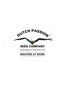 White Widow /3 - DUTCH PASSION