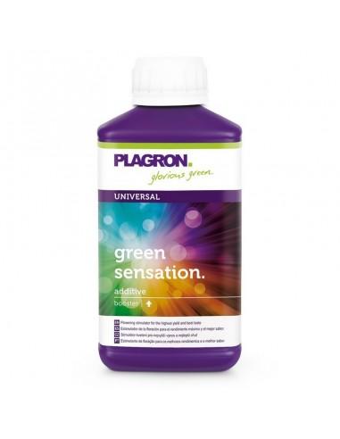 Green Sensation 1L - Booster de Floraison - Plagron