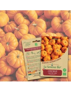 COURGE Jack Be Little Bio