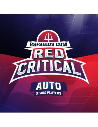 Red Critical Auto - BSF