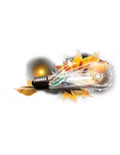Ampoule HPS 1000W Florastar - Agro