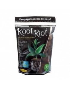 root riot sachet de 50