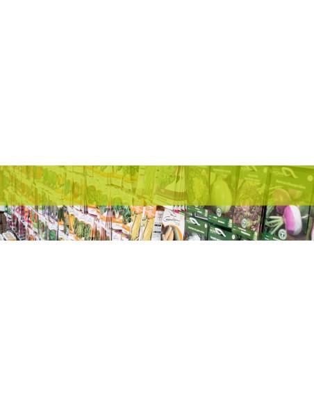 Graines pour jardins et terrasses